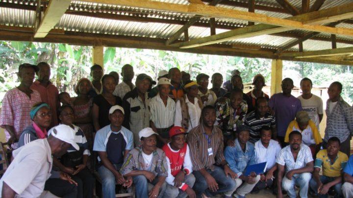 Forêt Communautaire Association La Main dans la main d'Alen (ALMA) à Ma'an